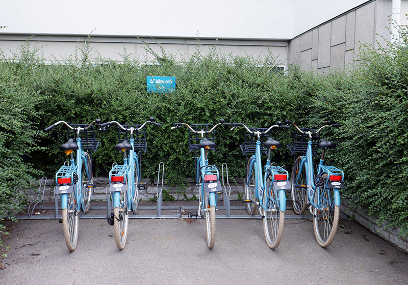 ist-bæredygtighed